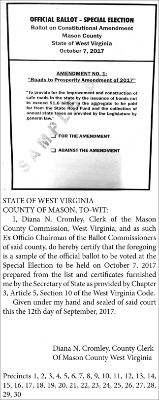 OFFICIAL BALLOT - SPECIAL ELECTION